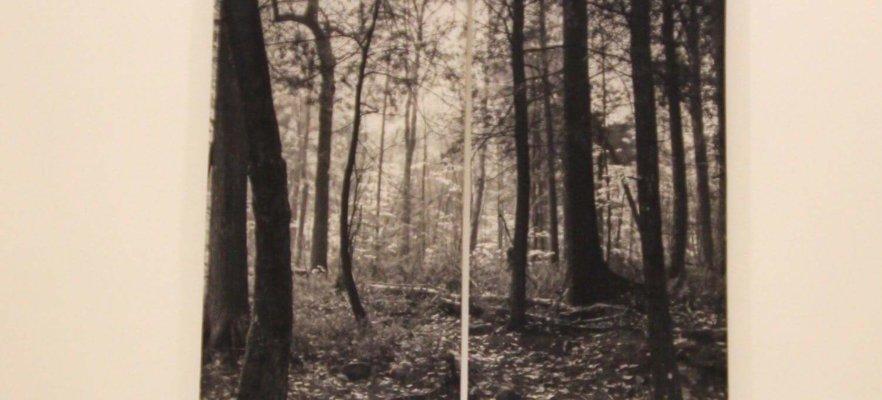 Aude – Owens 3 RGB