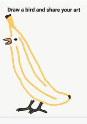 'banana bird' Charlotte Savage/Argosy