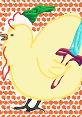 'Zelda bird' Lou Douglas/Submitted